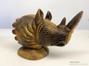Rhinoceros oeil de tigre protection
